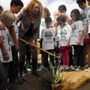 """Featured image for """"200 tress planted by new Ambassadors of the German School of Las Palmas de Gran Canaria"""""""