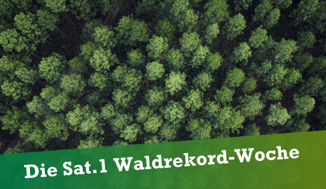 "Featured image for ""(Waldrekord-Woche) ForestRecord Week by SAT.1"""